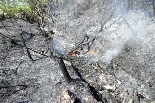 Hà Nội: Cháy rừng gần kho quân sự tại Sóc Sơn - anh 1