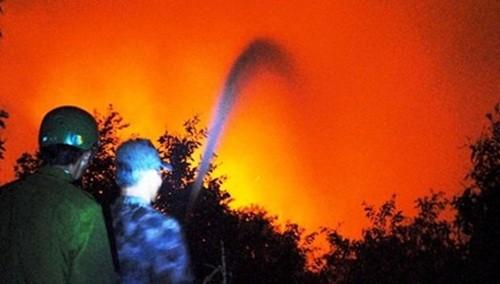 Kiên Giang: Cháy rừng U Minh Thượng, 3 chiến sĩ công an bị thương - anh 1