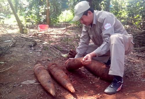 Phát hiện đạn pháo và đạn cối trong vườn nhà dân ở Quảng Trị - anh 1
