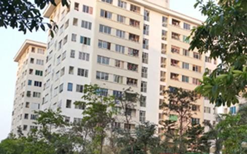 Hà Nội: Bắt khẩn cấp người mẹ dùng dao nhọn giết con đẻ 4 tháng tuổi ở KĐT Đặng Xá - anh 1