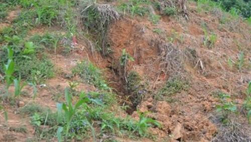 Hà Giang: Bố sát hại con trai 5 tuổi rồi chôn xác phi tang - anh 2