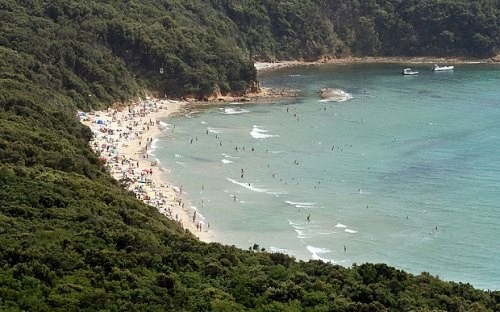 [Caption]Ảnh 2: Carlos was camping near the Cala Violina coast in Tuscany