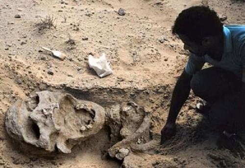 Thực hư những hộp sọ khổng lồ nơi thung lũng Chết - anh 2