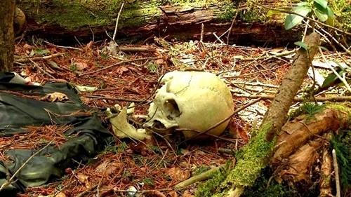 Rùng rợn những mảnh đất chết chóc do bị ma ám - anh 2
