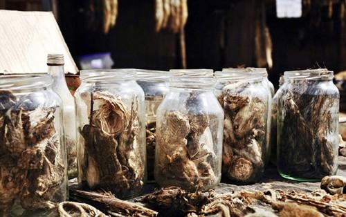Những bí ẩn bên trong khu chợ bùa ngải lớn nhất thế giới - anh 11