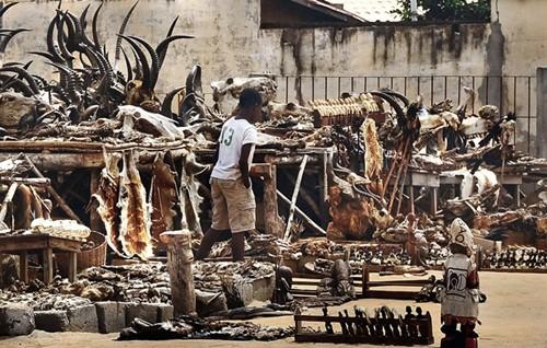 Những bí ẩn bên trong khu chợ bùa ngải lớn nhất thế giới - anh 8