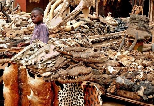 Những bí ẩn bên trong khu chợ bùa ngải lớn nhất thế giới - anh 16