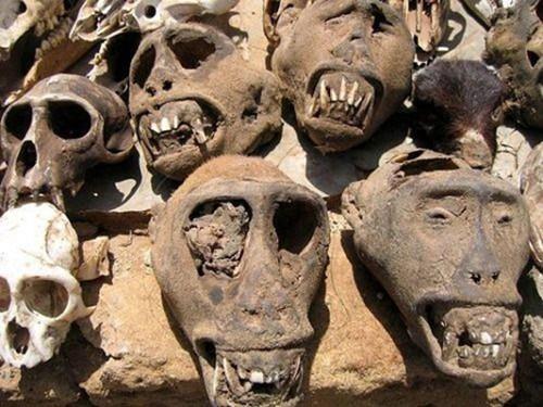 Những bí ẩn bên trong khu chợ bùa ngải lớn nhất thế giới - anh 14