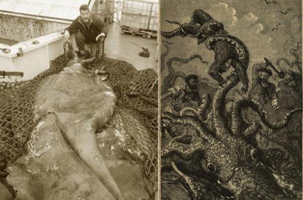 Cận cảnh thủy quái bị bắt sống ở Nam Cực - anh 1