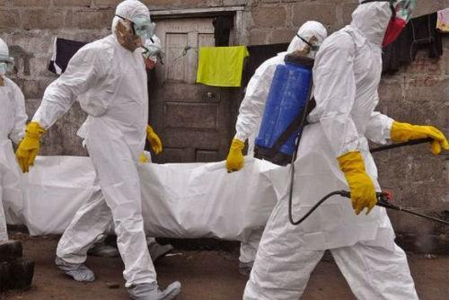 8 bác sĩ vùng dịch Ebola bị dân Tây Phi dùng dao sát hại dã man - anh 3