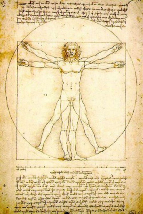 Những kiệt tác hội họa làm đau đầu hậu thế của Leonardo da Vinci - anh 12