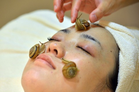 Dựng tóc gáy với kiểu massage bằng rắn và dao phay có '1-0-2' trên thế giới - anh 6