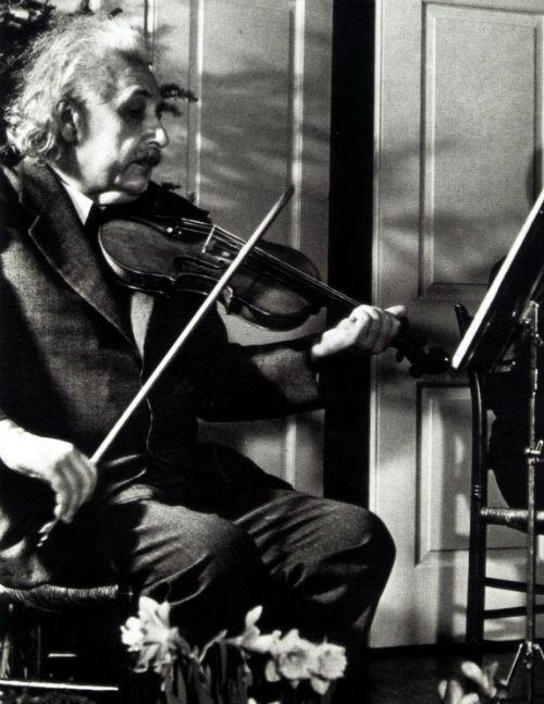 Albert Einstein và những bí mật về một cuộc đời vĩ đại - anh 6