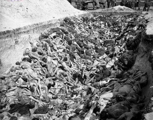 Trùm phát xít Hitler và sự thật về xu hướng tình dục bệnh hoạn - anh 3