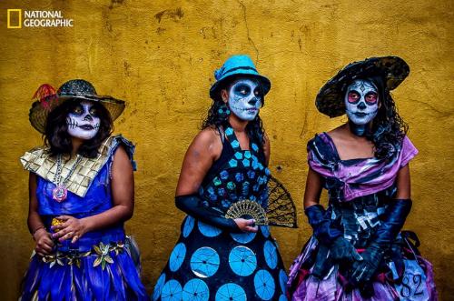 10 bức ảnh 'hớp hồn' của giới nhiếp ảnh gia dự 'Cuộc thi ảnh' National Geographic 2014 - anh 1
