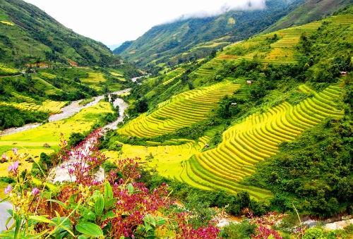 7 'thiên đường hạ giới' ở Việt Nam được báo chí nước ngoài vinh danh - anh 5