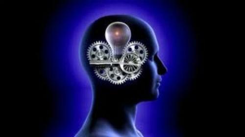 Hành trình khám phá bí ẩn não bộ, cơ quan phức tạp nhất vũ trụ - anh 6