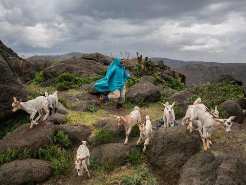 Chùm ảnh: Những bức ảnh tuyệt đẹp của National Geographic - anh 3