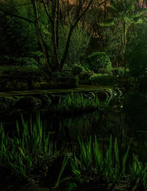 Chùm ảnh: Những bức ảnh tuyệt đẹp của National Geographic - anh 17