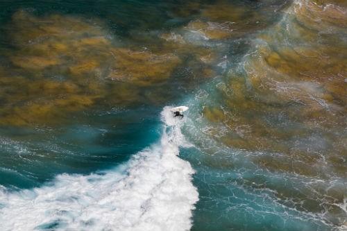 Chùm ảnh: Những bức ảnh tuyệt đẹp của National Geographic - anh 18
