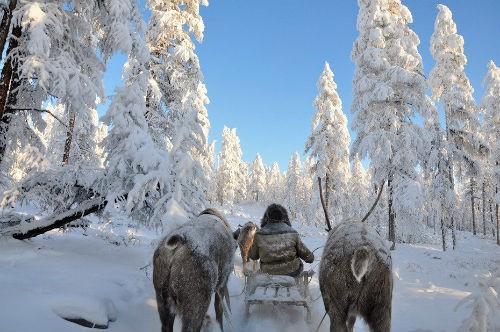 Chùm ảnh: Cuộc sống của người dân ở ngôi làng lạnh nhất thế giới Oymyakon - anh 1