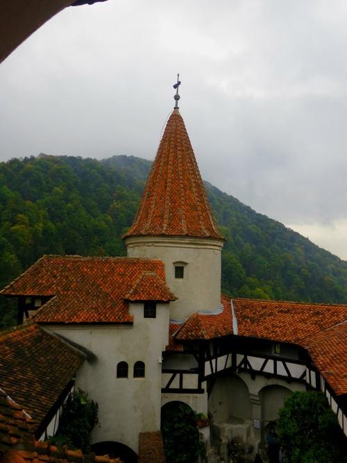 Khám phá bí mật bên trong tòa lâu đài Bá tước Dracula - anh 23