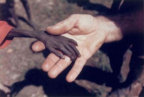 Những bức ảnh có sức lay động lòng người nhất trên thế giới - anh 1