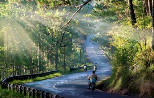 Việt Nam và những điều thú vị, đáng yêu trong mắt người nước ngoài - anh 11