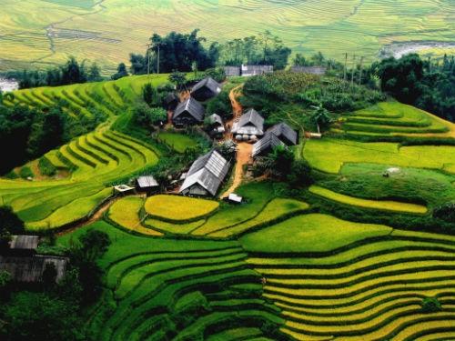 Việt Nam và những điều thú vị, đáng yêu trong mắt người nước ngoài - anh 15