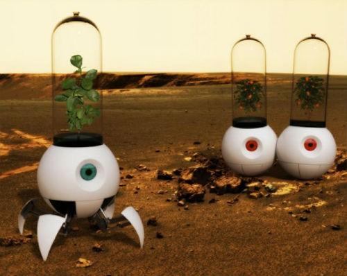 Trồng cây trong vũ trụ, dự án táo bạo của các nhà khoa học châu Âu - anh 4