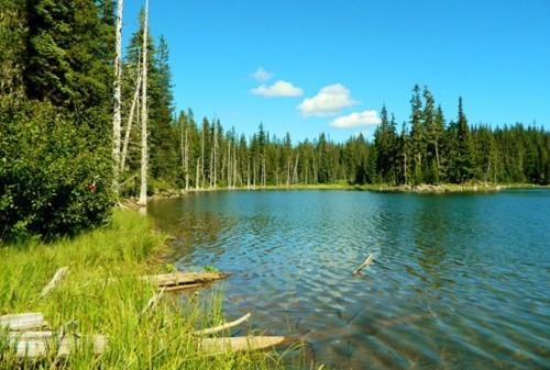 9 hồ nước 'tử thần' nguy hiểm nhất hành tinh - anh 2