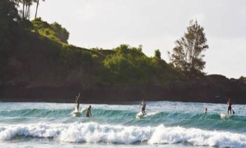 Khám phá 7 nét quyến rũ ở Kaua'i, hòn ngọc của Hawaii - anh 3