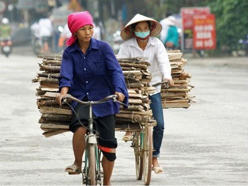 Ngắm nét bình dị của nông thôn Việt Nam trên báo nước ngoài - anh 2