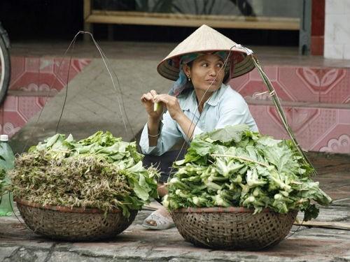Ngắm nét bình dị của nông thôn Việt Nam trên báo nước ngoài - anh 3