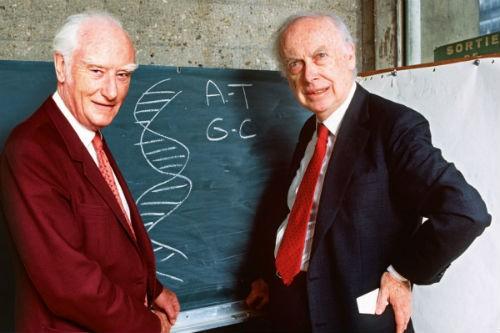 Nhà khoa học tìm ra chuỗi DNA: Rao bán huy chương Nobel sau 7 năm bị xa lánh - anh 2