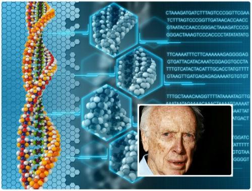 Nhà khoa học tìm ra chuỗi DNA: Rao bán huy chương Nobel sau 7 năm bị xa lánh - anh 4