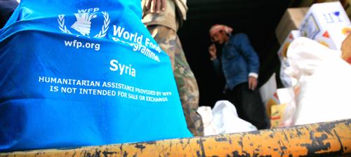 Liên Hợp Quốc đột ngột cắt viện trợ lương thực cho 1,7 triệu người tị nạn Syria - anh 1