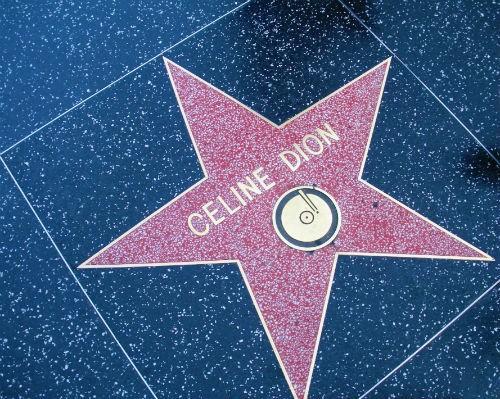 Celine Dion – Nữ Diva với những khúc tình ca bất hủ vượt thời gian - anh 4