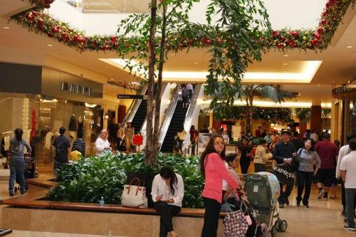 Không khí chuẩn bị Giáng sinh rộn ràng của cộng đồng Việt tại Mỹ - anh 2
