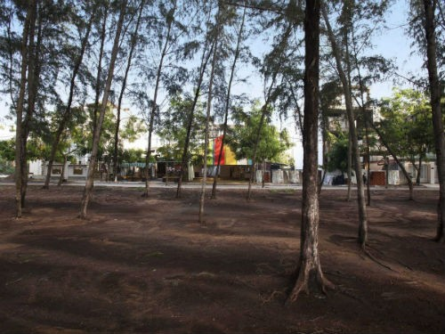 """'The Chapel' của Việt Nam đoạt giải """"Công trình của năm"""" tại Liên hoan Kiến trúc Thế giới - anh 10"""
