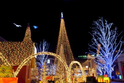 Ngắm nước Mỹ quyến rũ trong sắc màu Giáng sinh 2014 - anh 24