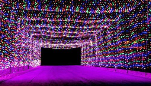 Ngắm nước Mỹ quyến rũ trong sắc màu Giáng sinh 2014 - anh 11