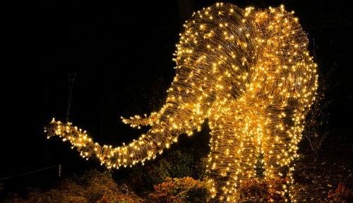 Ngắm nước Mỹ quyến rũ trong sắc màu Giáng sinh 2014 - anh 12