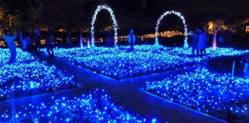 Giới trẻ Nhật nô nức đón Giáng sinh 2014 - anh 8