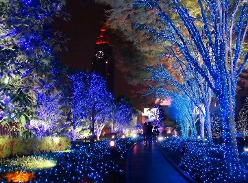 Giới trẻ Nhật nô nức đón Giáng sinh 2014 - anh 9