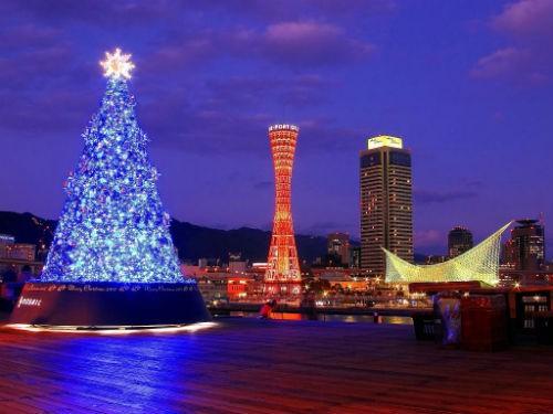 Giới trẻ Nhật nô nức đón Giáng sinh 2014 - anh 11