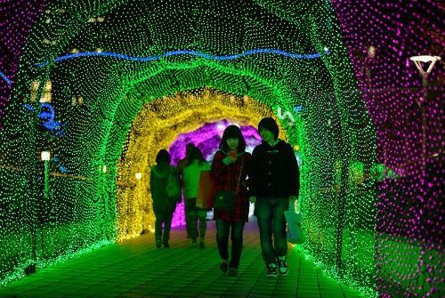 Giới trẻ Nhật nô nức đón Giáng sinh 2014 - anh 1