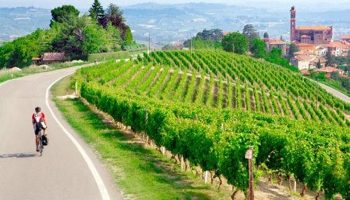 Ngắm vẻ quyến rũ 12 vùng sản xuất rượu vang trứ danh của Pháp - anh 1