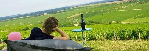 Ngắm vẻ quyến rũ 12 vùng sản xuất rượu vang trứ danh của Pháp - anh 8