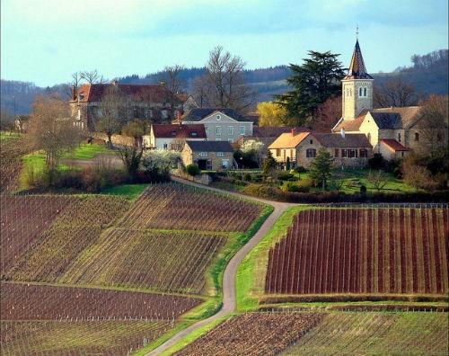 Ngắm vẻ quyến rũ 12 vùng sản xuất rượu vang trứ danh của Pháp - anh 13